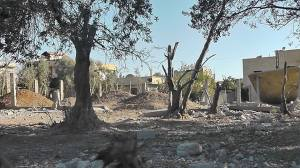 Trees in the aftermath of Assad shelling. Moadamiya 2013